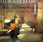 Lubomir Brabec - Guitar Recital (vinyl)