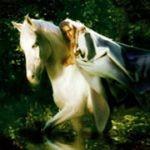 Gjallarhorn - Rimfaxe (CD)