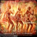 Moreira Da Silva, Dicro, Os 3 Malandros, Bezerra Da Silva, Raul De Barros & more - Samba! Samba! (CD)