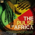 Various Artists - The Pulse of Africa (CD)