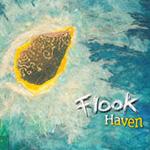 Flook - Haven (CD)