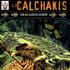 Los Calchakis Vol.7 - Sur les ailes du condor (CD)