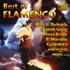 Various Artists - Best of Flamenco (CD)