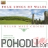 Welsh Male Choir - Folk Songs of Wales (CD)