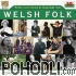 Various Artists - The Ultimate Guide to Welsh Folk (2CD)