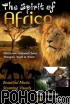 Various Artists - The Spirit of Africa - DVD