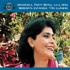 Lilia Vera, F. Reyna, Trio Llanero, Serenata Guyanesa - 40 Venezuela (CD)