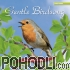 Sounds of the Earth - Gentle Birdsong CD