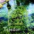Tejedor - Texedores de Sueòos (CD)